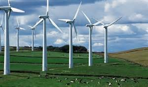 wind farms 1